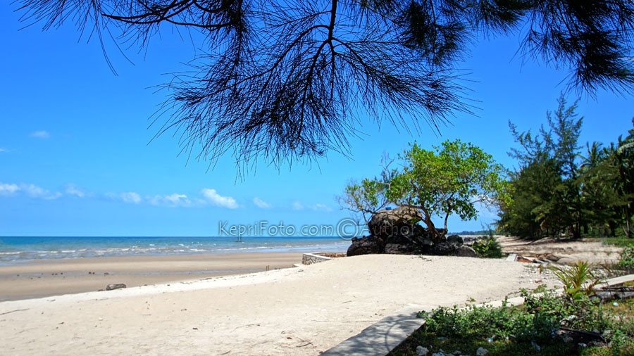 Retribusi Wisata Pantai Batu Berdaun